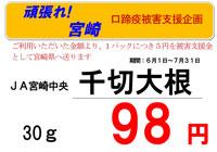 20100603_miyazakipop.jpg