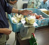20110529_kensa.jpg