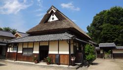 20120723_uenoke.jpg