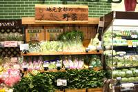 20121116_shimogamoopen7.jpg