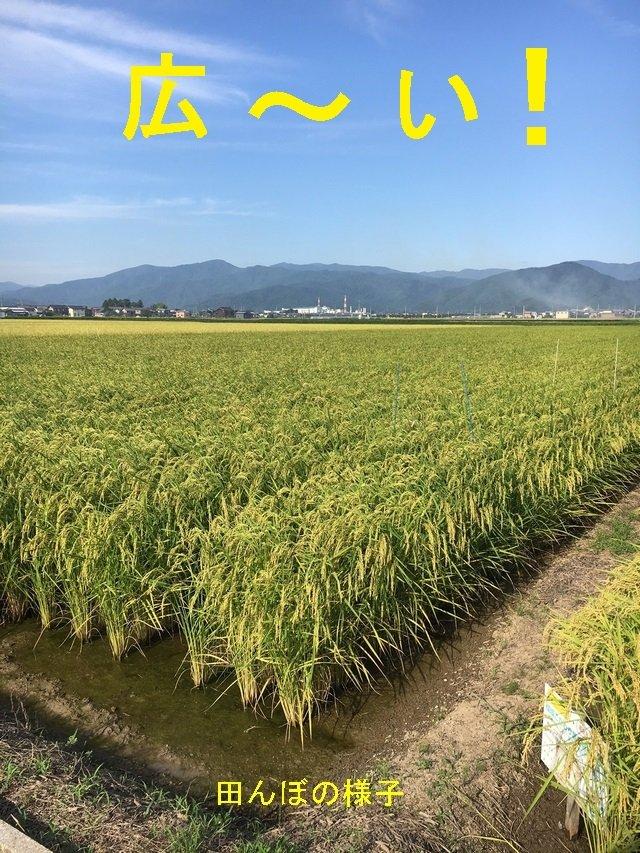 003-JAkitabiwako.jpg