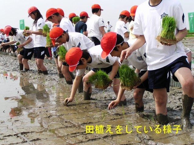 012-JAkitabiwako.jpg
